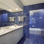 basement bathroom with blue tile