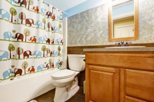 long island bathroom idea